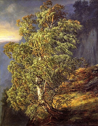 saga_1790–1840.jpg